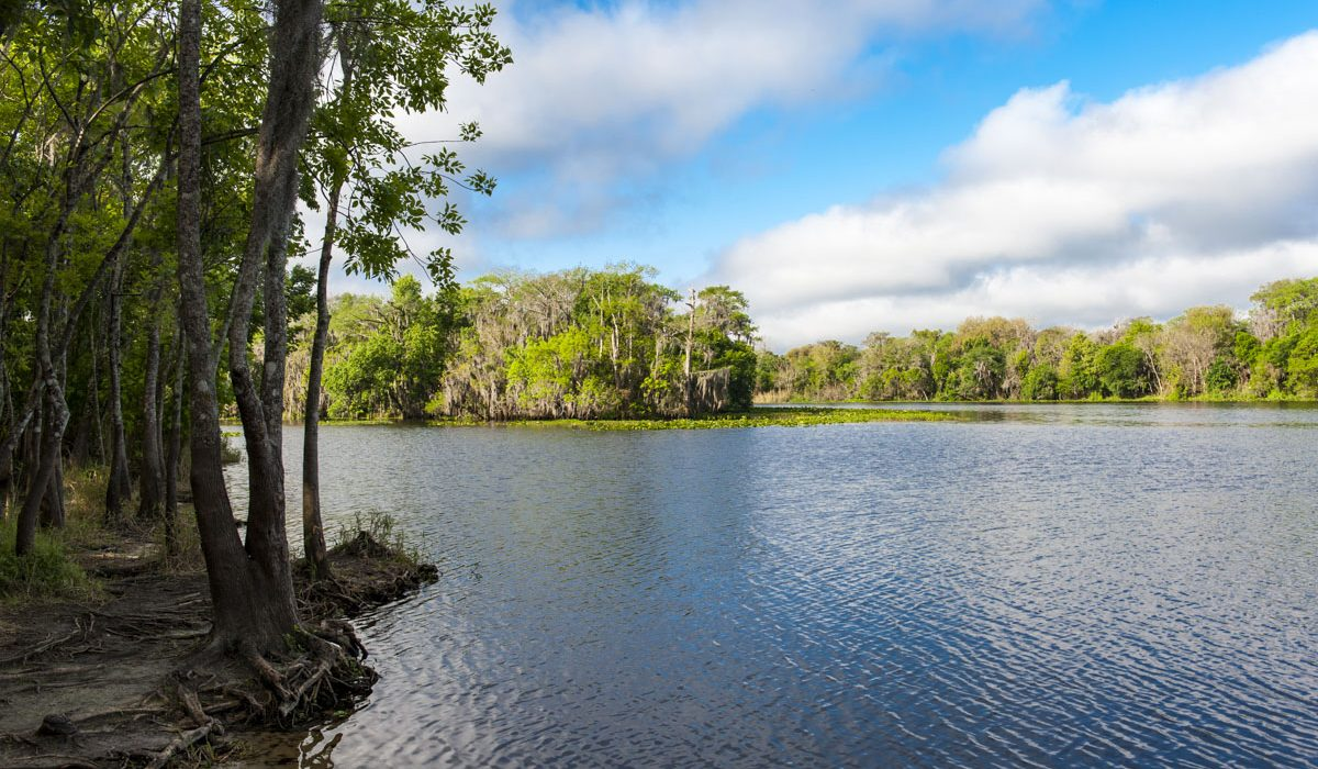 St. Johns River at Blue Spring State Park in Volusia County