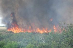 Prescribed fire at Fort Drum Marsh Conservation Area