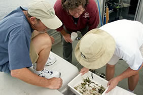 Staff looking at samples from the St. Johns River