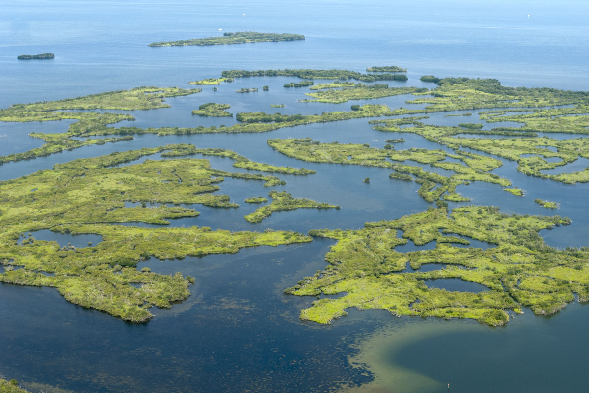 Aerial of islands in the Indian River Lagoon