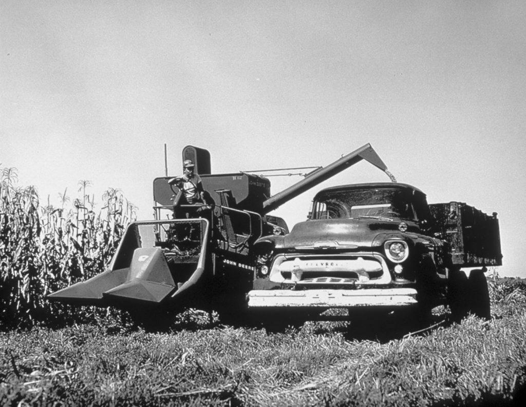 Old photo of corn harvesting