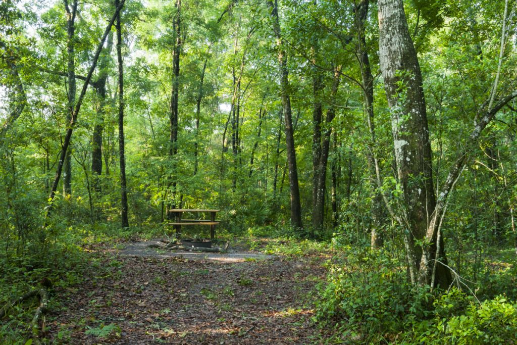 Camping area at Black Creek Ravines Conservation Area