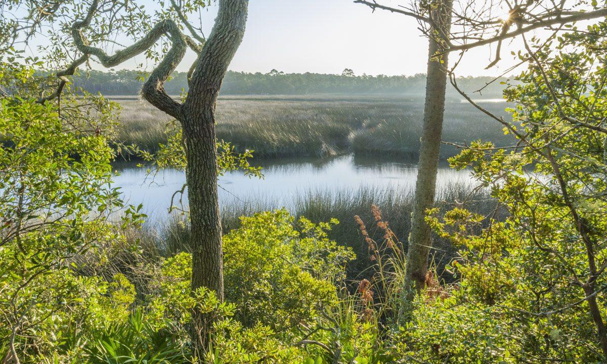 Pellicer Creek Conservation Area