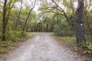 Murphy Creek Conservation Area trails