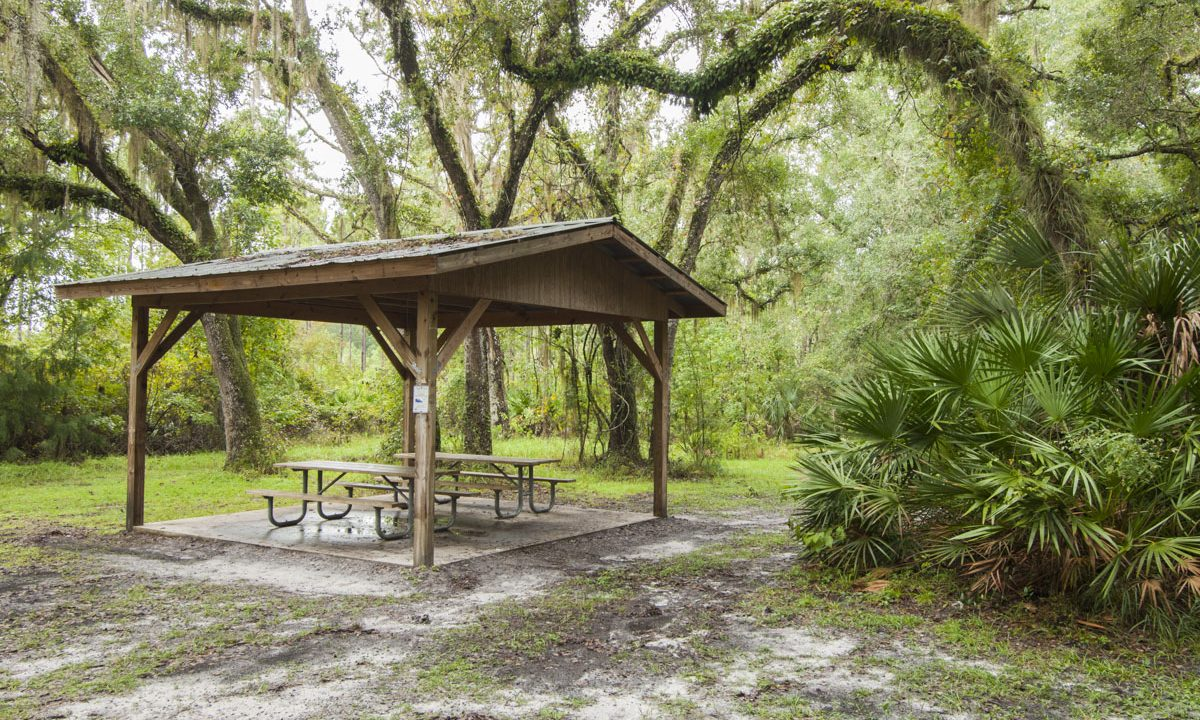 Group camping area picnic shelter