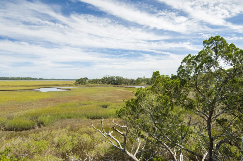 Salt marsh at Stokes Landing Conservation Area