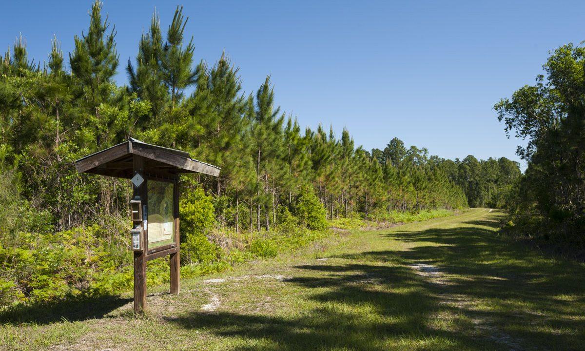 Entrance kiosk at Clark Bay Conservation Area