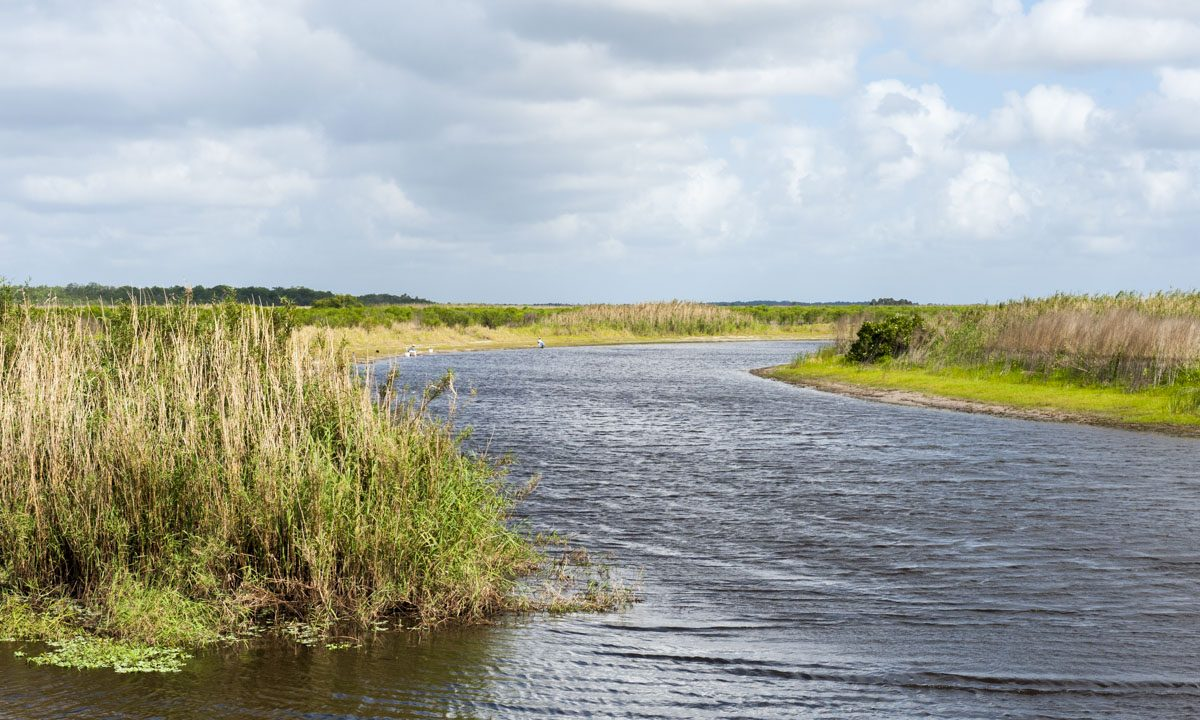 St. Johns River along the Seminole Ranch Conservation Area