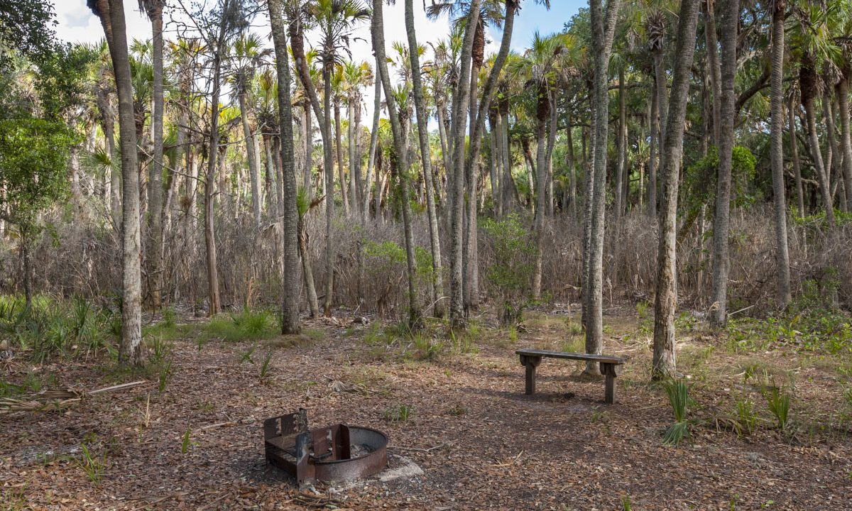 Camping Area at Seminole Ranch Conservation Area