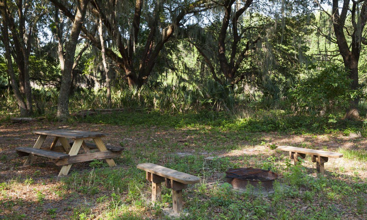 Camping area at Orange Creek Restoration Area