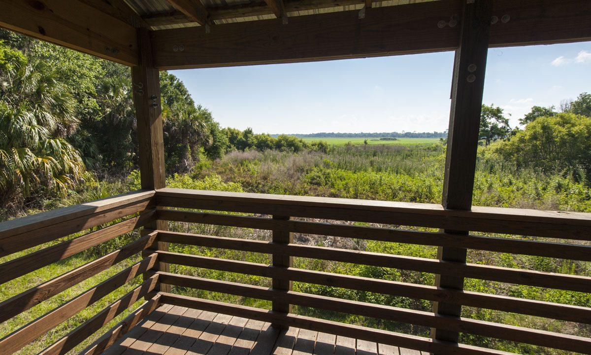 Observation Tower overlook at Orange Creek Restoration Area