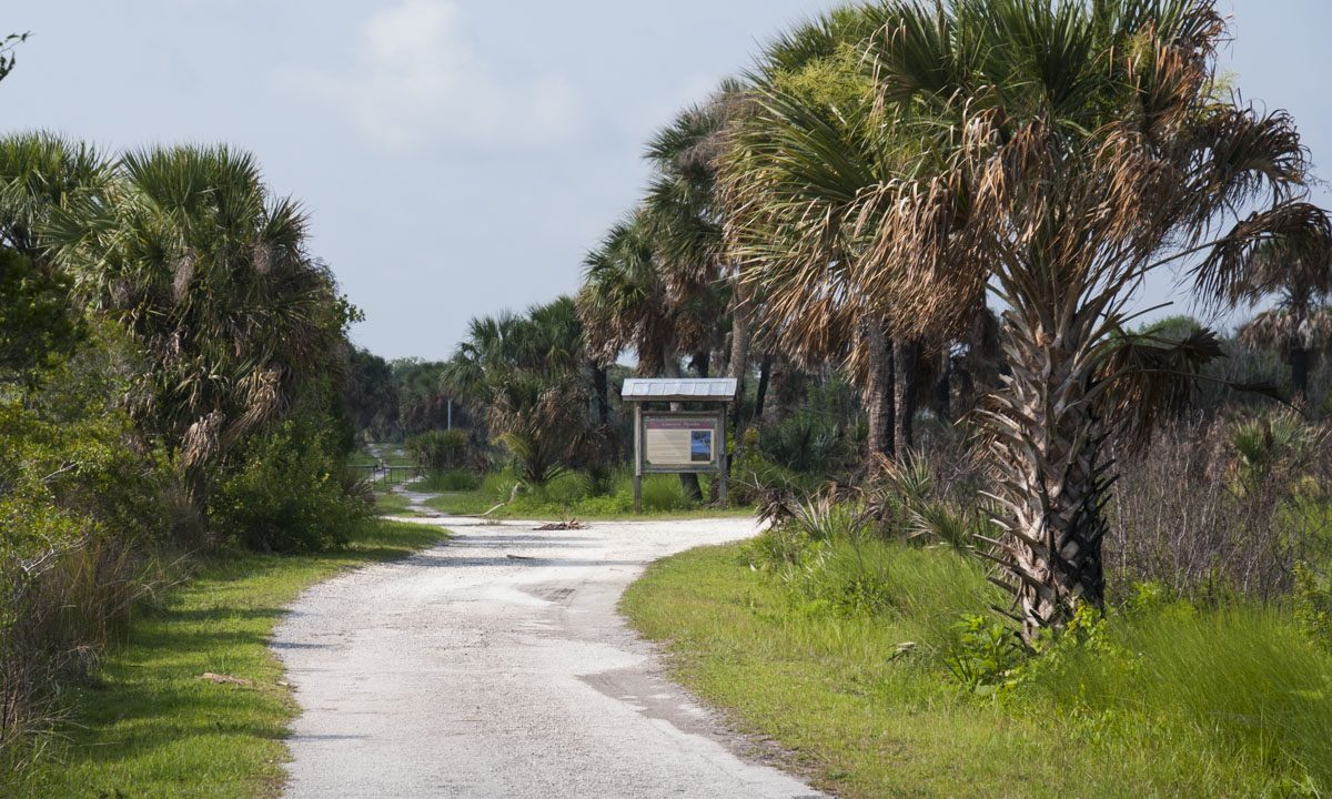 Entrance road at Canaveral Marshes Conservation Area