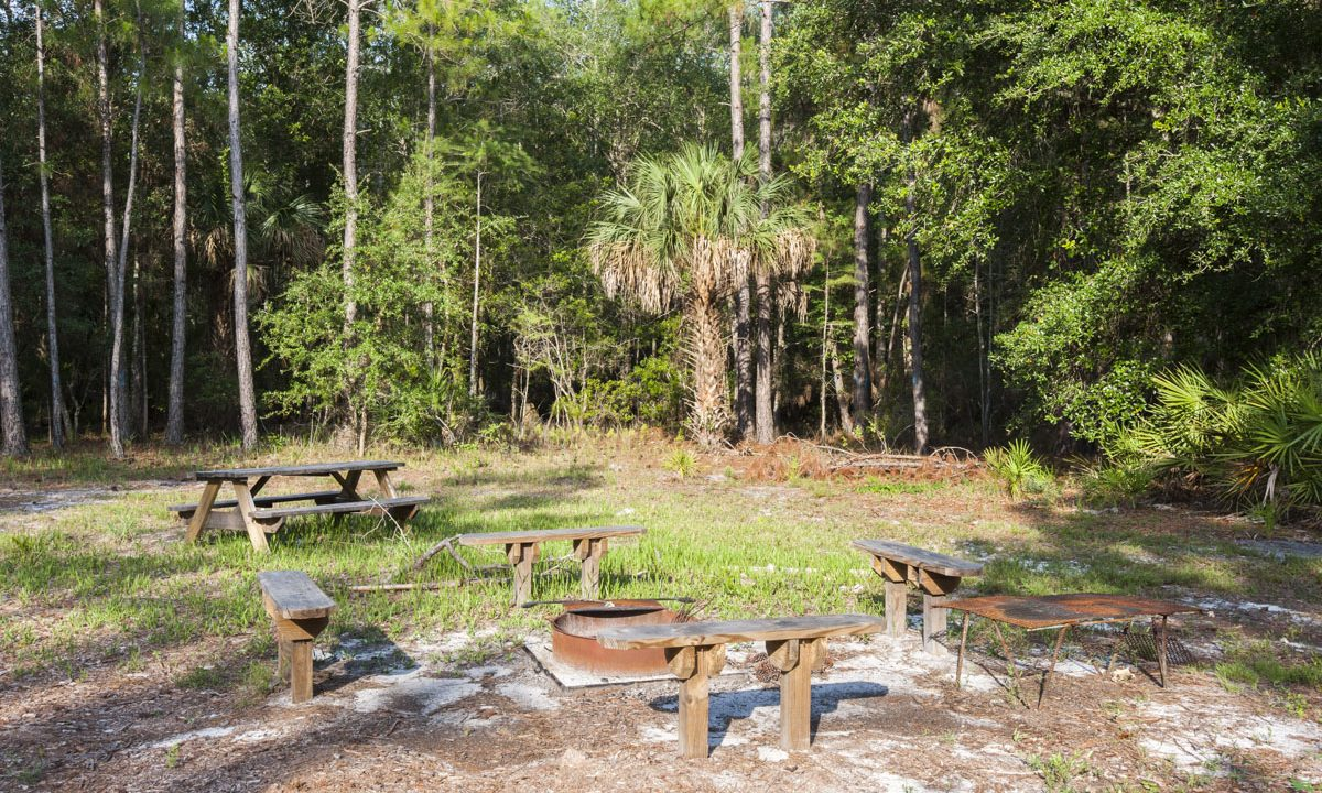 Group camping area at Palm Bluff Conservation Area