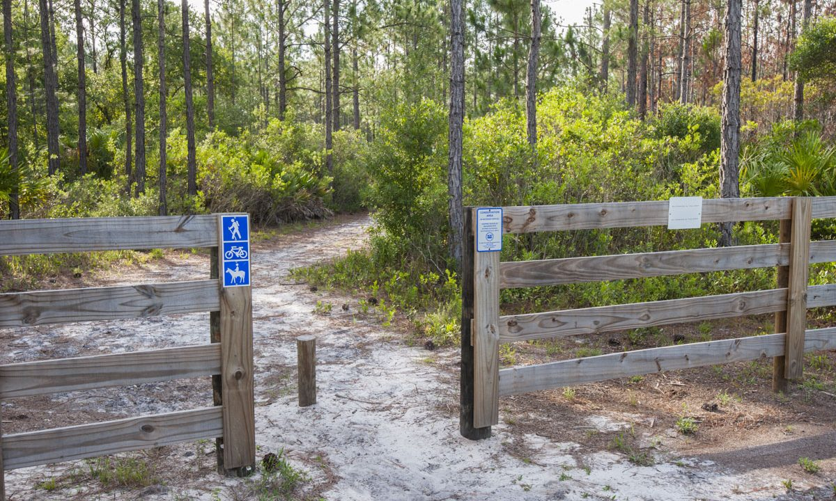 Hiking trail entrance at Palm Bluff Conservation Area