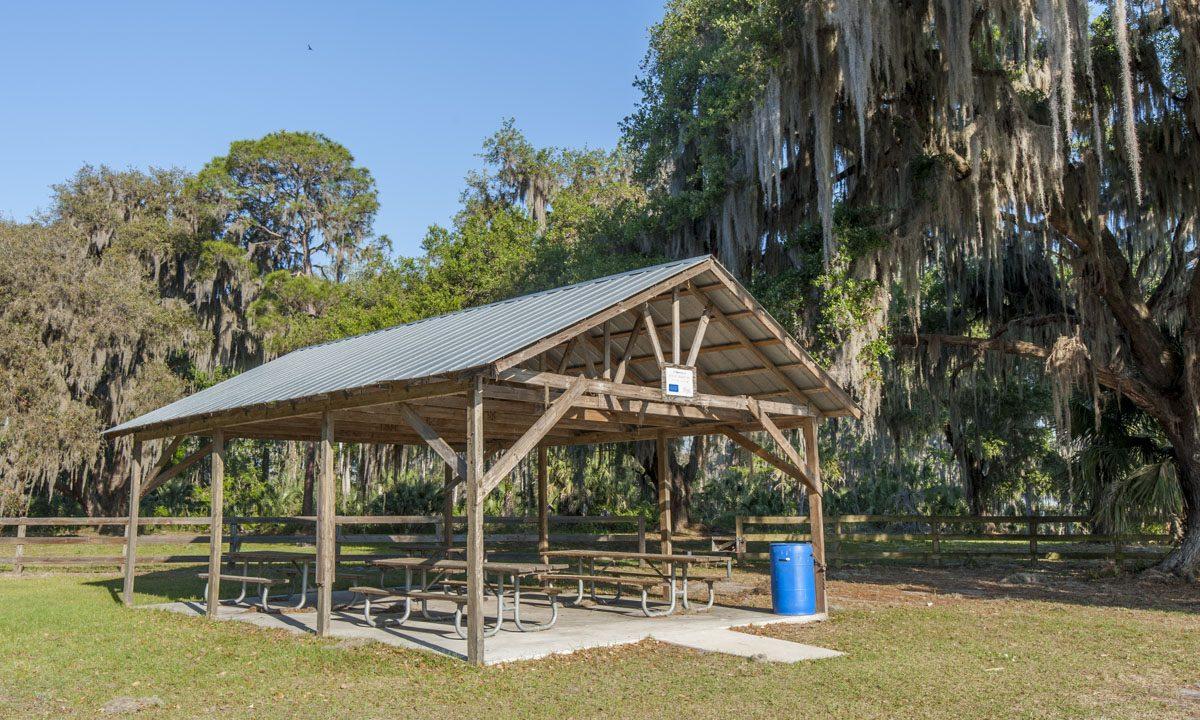 Picnic shelter next to large oak trees