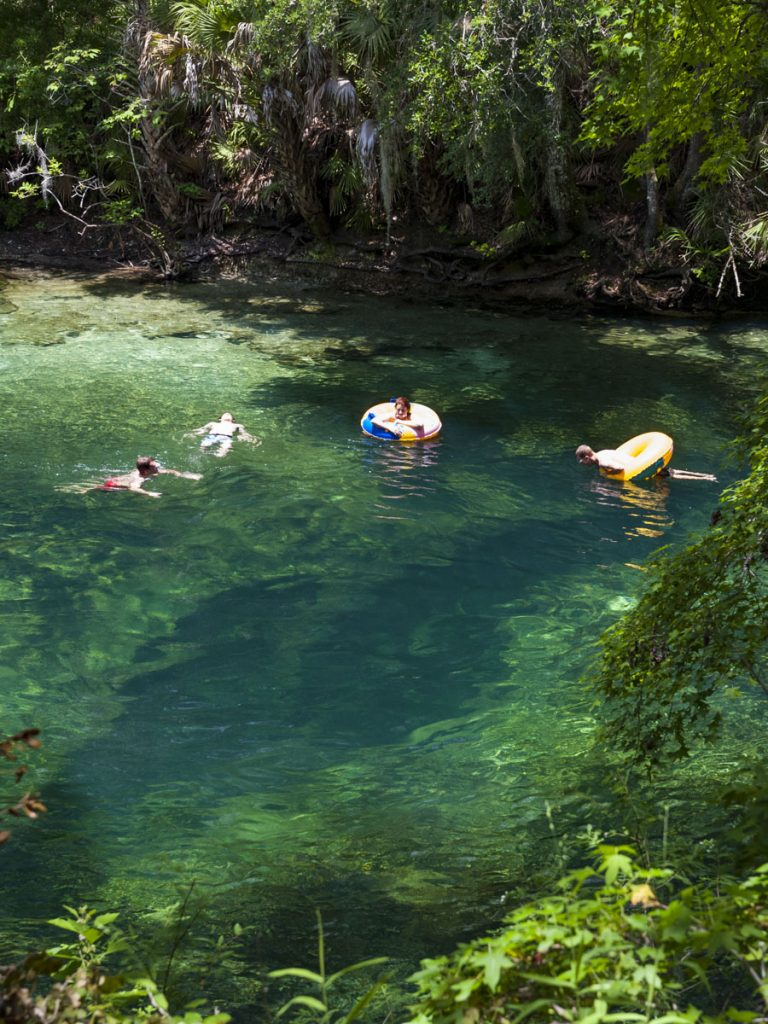 Swimming at Blue Spring in Volusia County