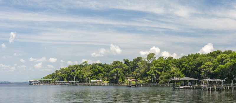 Docks along the St. Johns River near Orangedale