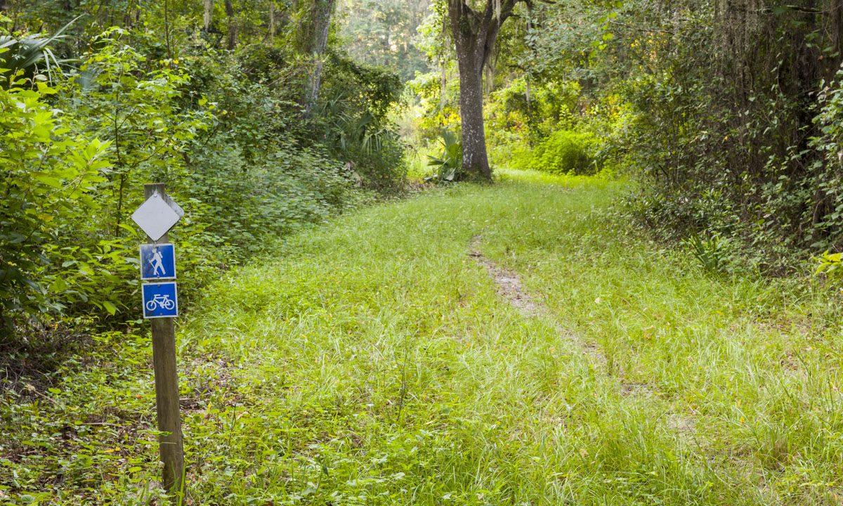 White blazed hiking trail