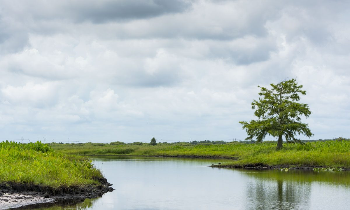 St. Johns River at Canaveral Marshes