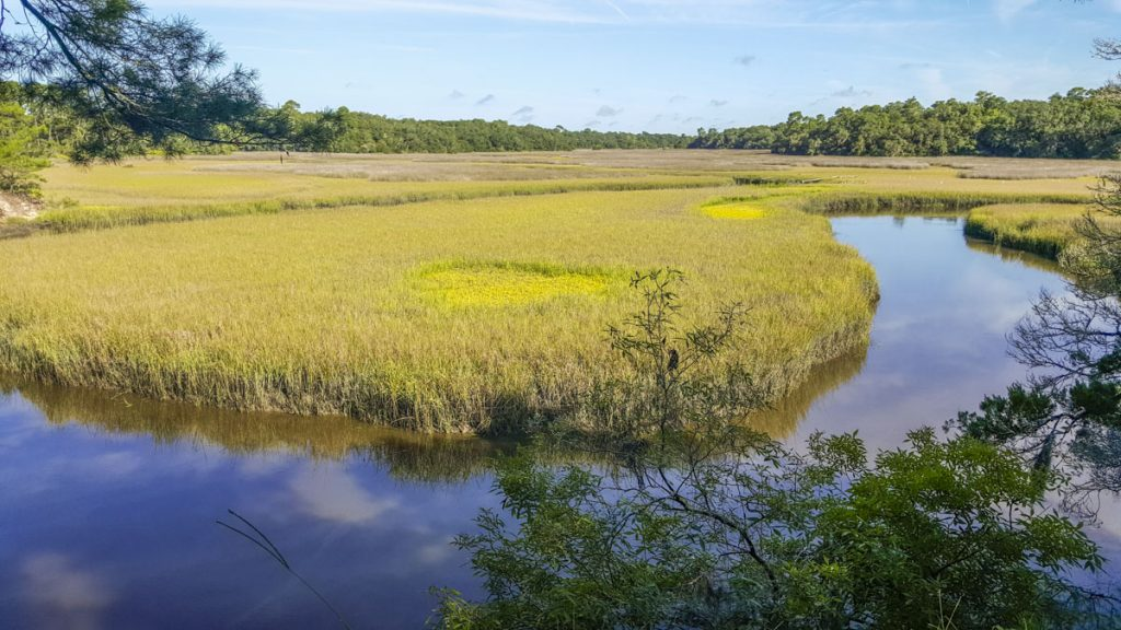 Moses Creek winding through a salt marsh