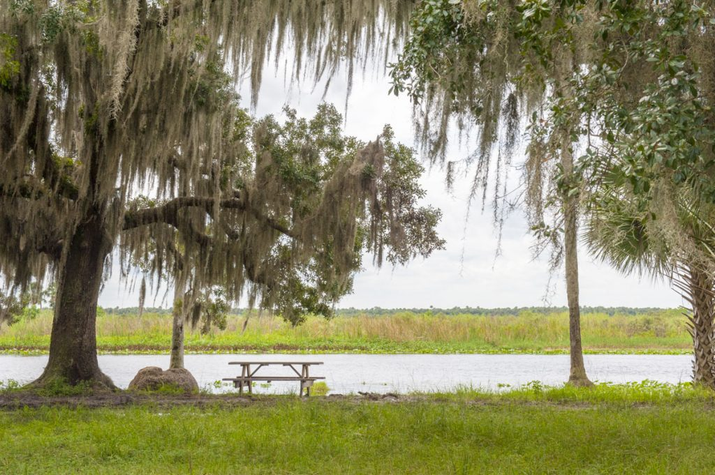 Picnic area along the St. Johns River