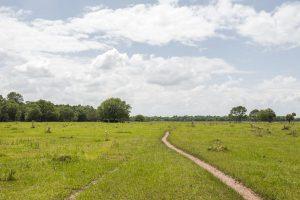 Sunnyhill Restoration Area