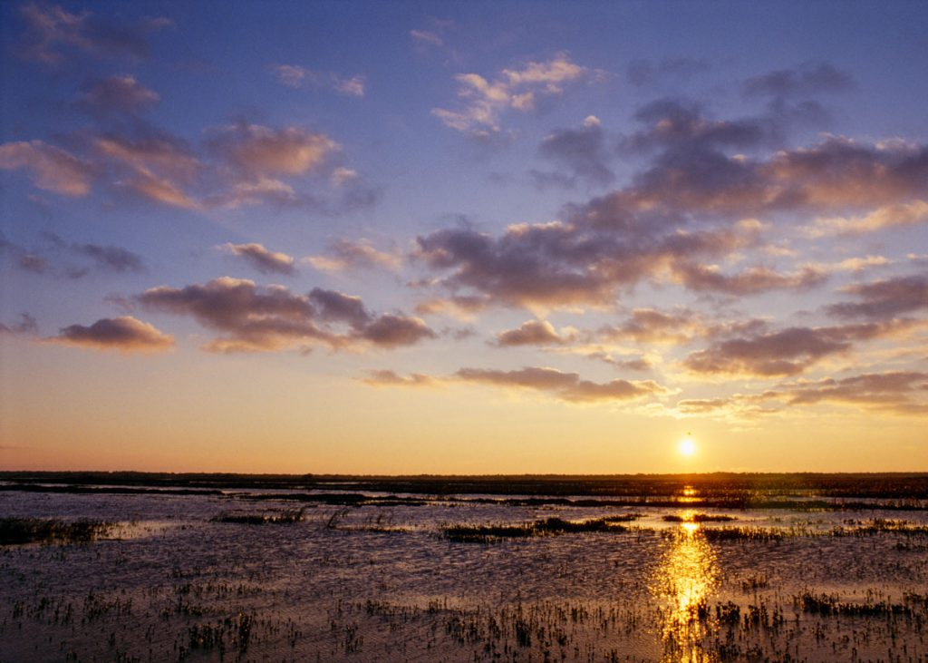 Sunrise over Lake Jesup wetlands