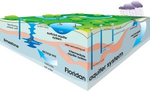 Cutaway graphic of the aquifer system in Florida