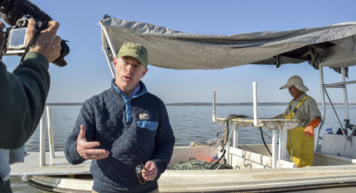 The district's Dr. Dean Dobberfuhl, Water Resources bureau chief, is interviewed about the gizzard shad harvest and its benefits to Florida lakes.