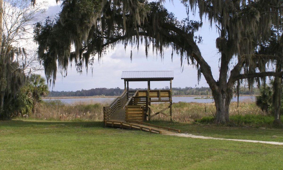 Observation Tower at Orange Creek Restoration Area
