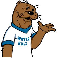Cartoon illustration of Raleigh Otter