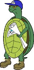 Cartoon illustration of a turtle