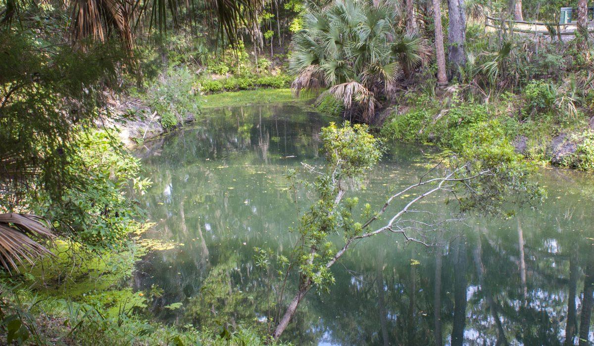 Gemini Springs in Volusia County