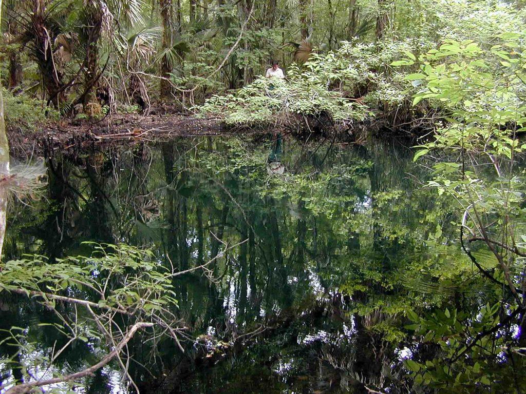 Blackwater Springs in Lake County