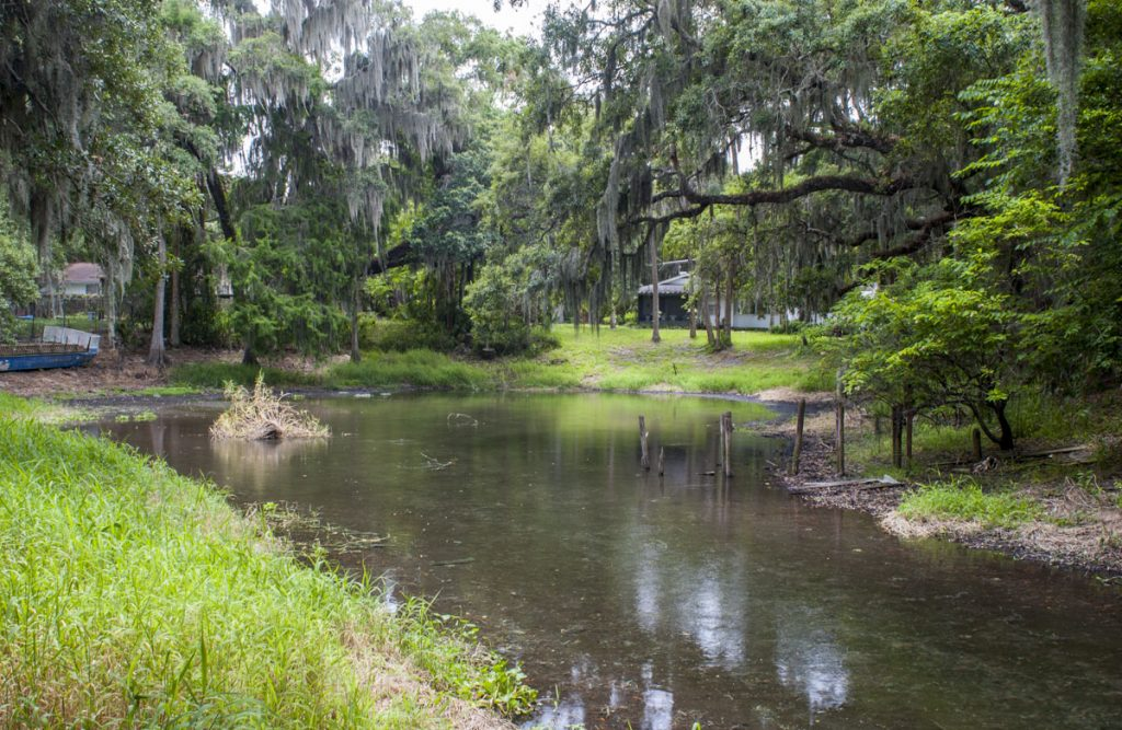 Clifton Springs in Seminole County