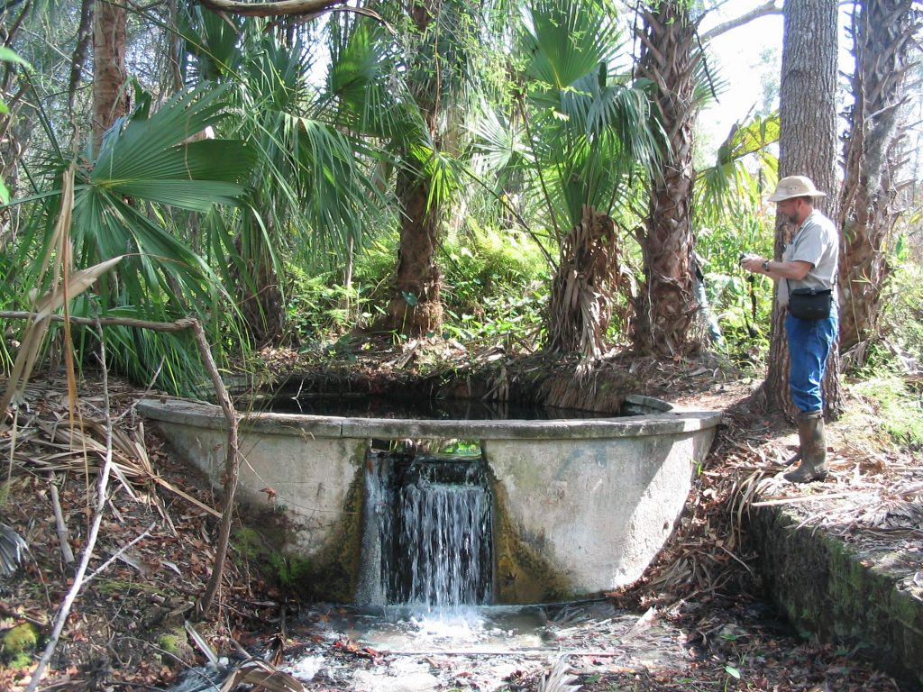 Ginger Ale Springs in Seminole County