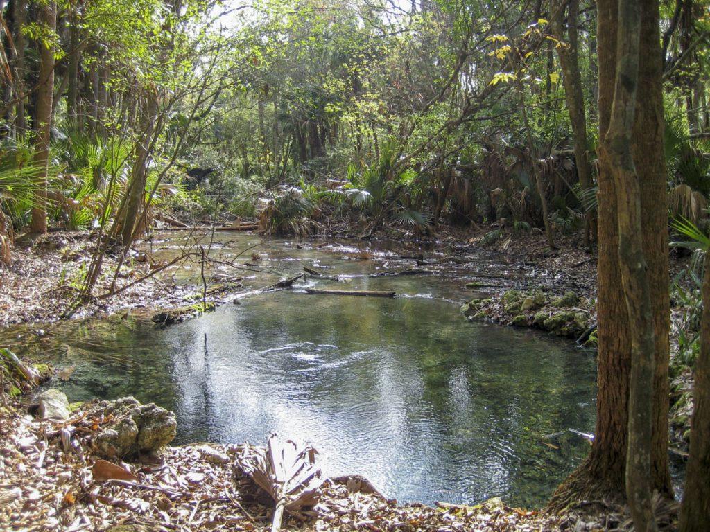 Helene Springs in Lake County