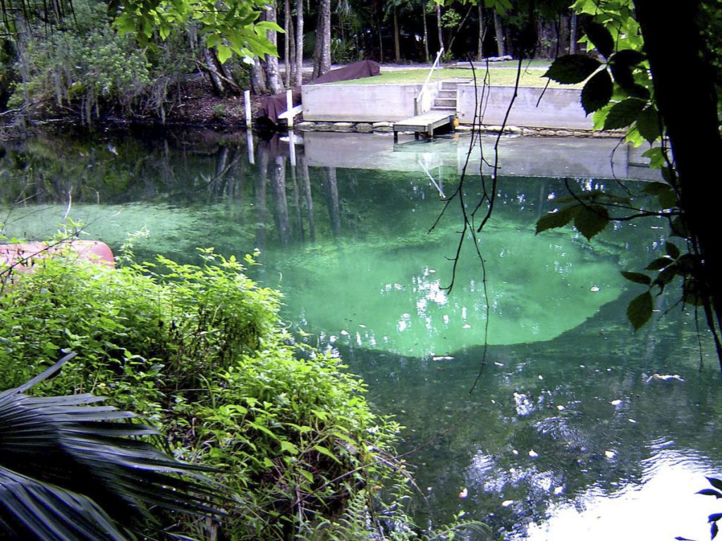 Nova Spring in Seminole County