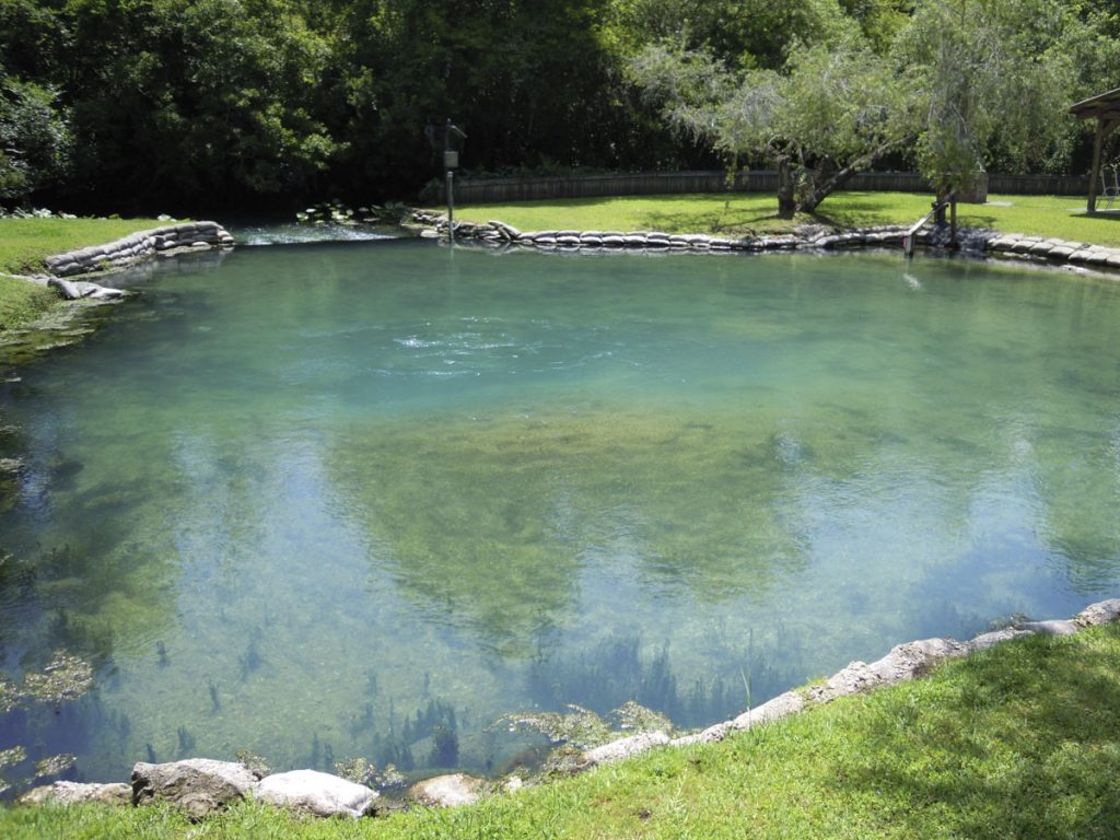 Starbuck Spring in Seminole County