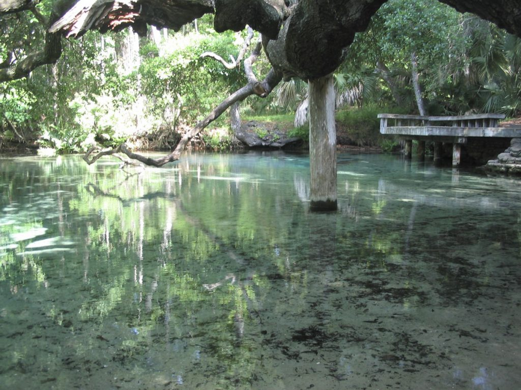 Sweetwater Springs and Little Sweetwater Spring in Marion County