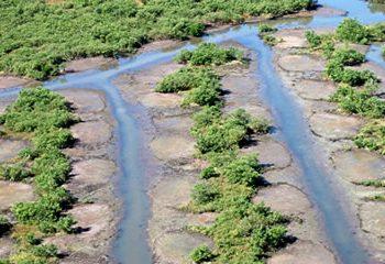 Dragline ditch restoration