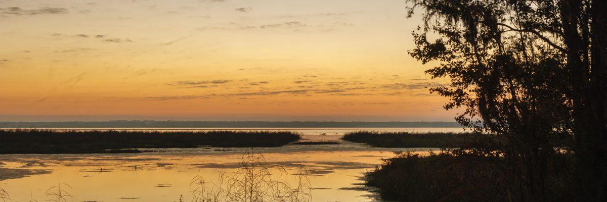 Sunrise at Newnans Lake