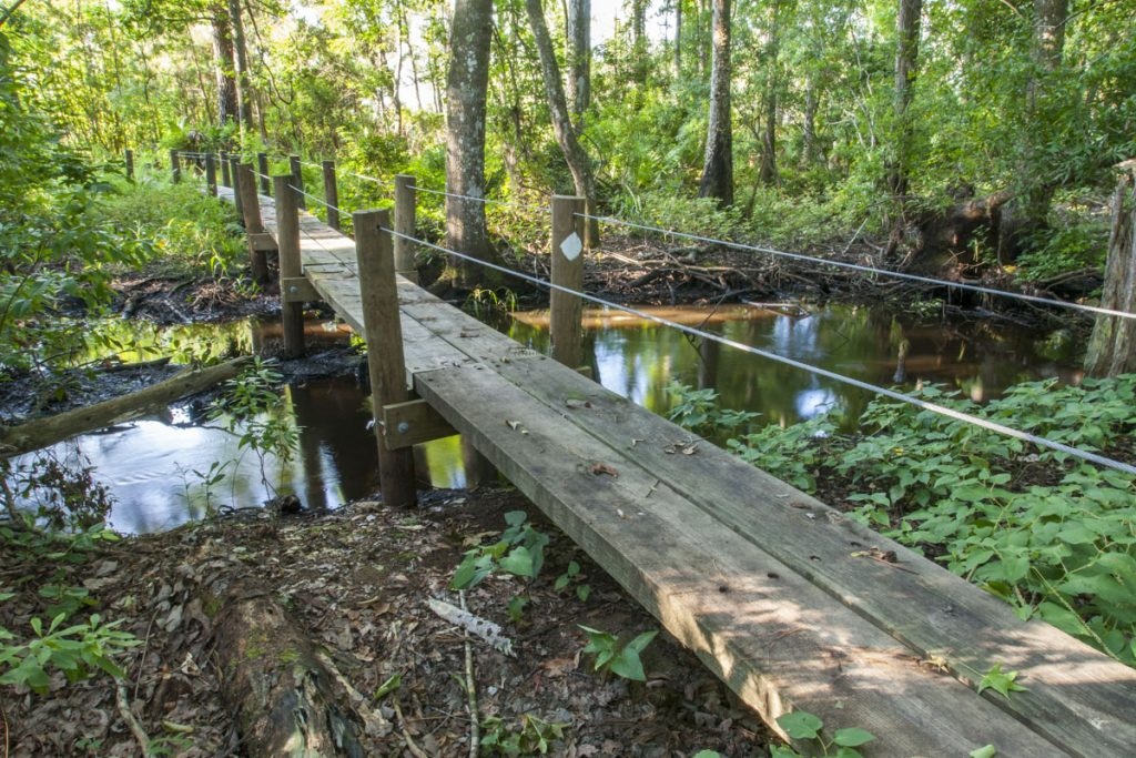 Foot bridge at Dunns Creek Conservation Area