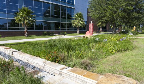 LID modified dry detention stormwater system at the University of Florida in Gainesville, Florida