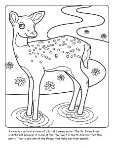 St. Johns River coloring sheet number 2
