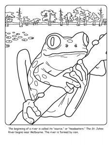 St. Johns River coloring sheet number 3