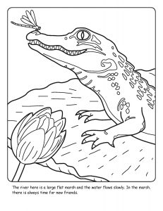 St. Johns River coloring sheet number 4