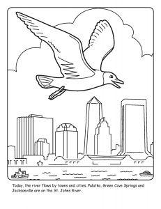 St. Johns River coloring sheet number 12
