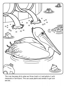 St. Johns River coloring sheet number 17