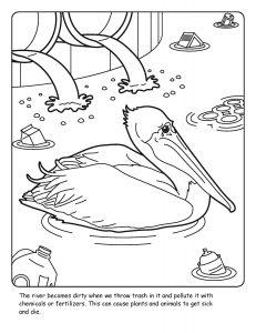 St. Johns River coloring sheet number 17
